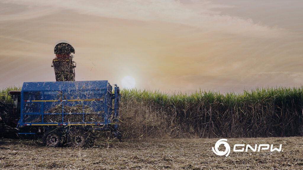 Potencial dos Biocombustiveis no Brasil